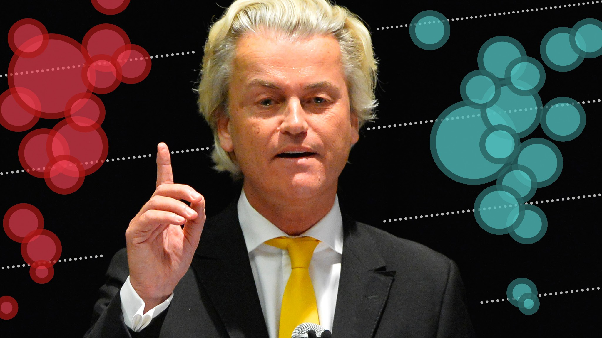 Image result for How education level is the biggest predictor of support for Geert Wilders