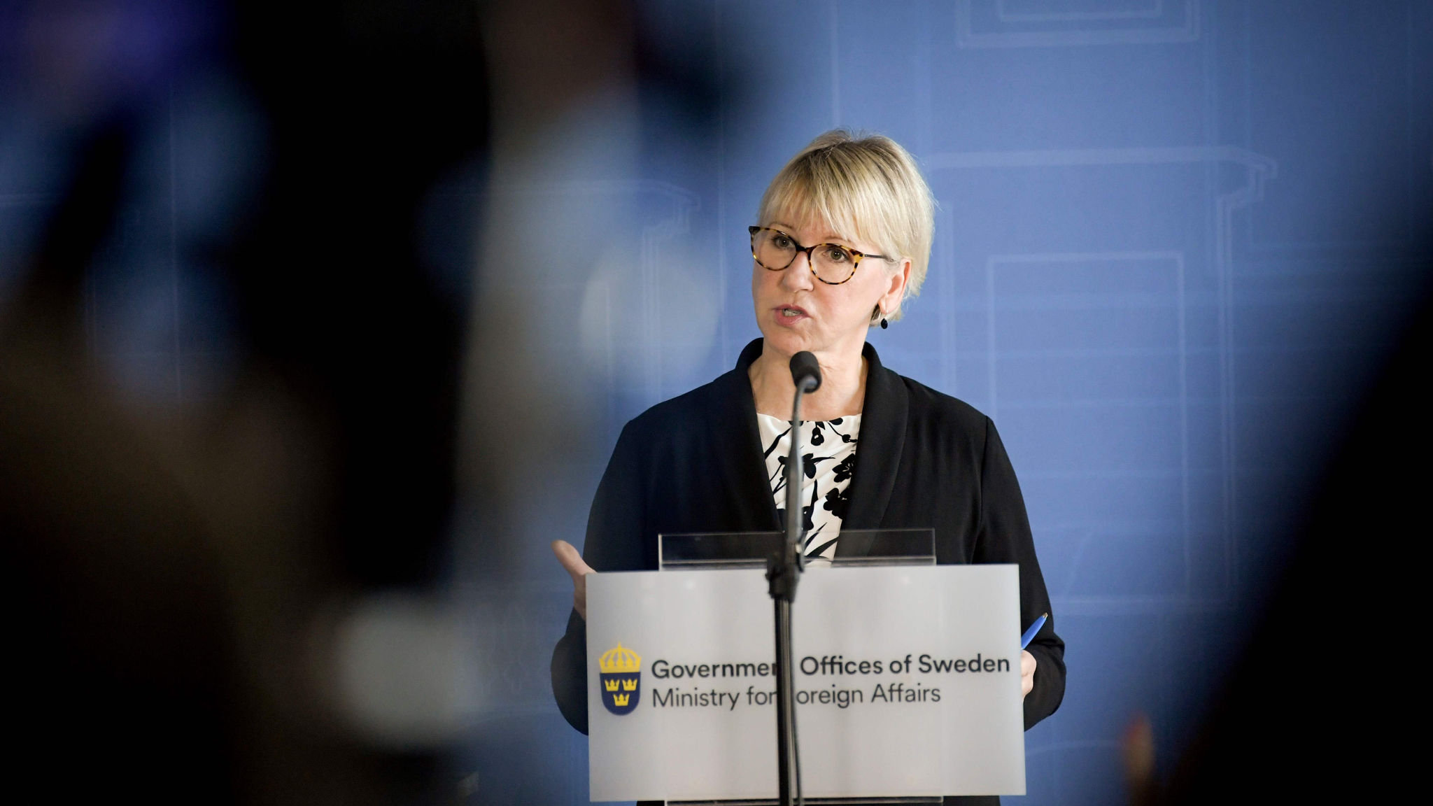 US stance on Arctic is 'dangerous', says Sweden's foreign minister