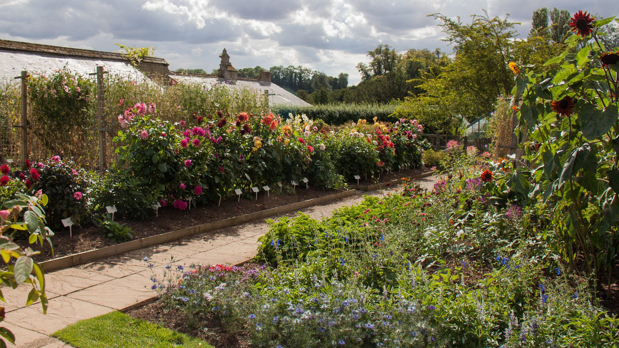 The appeal of the cutting garden | Financial Times