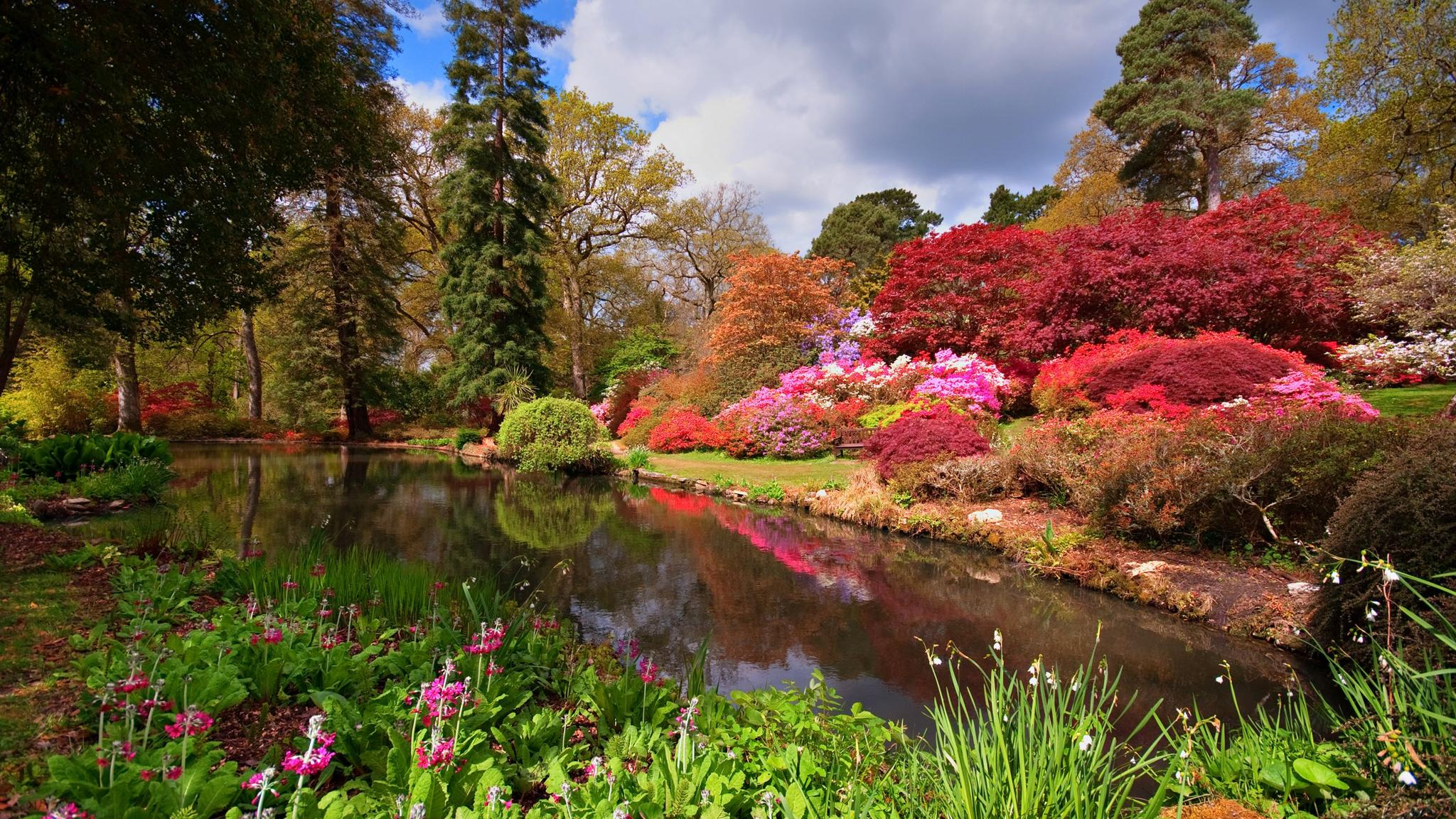 Lionel de Rothschild\'s horticultural legacy at Exbury Gardens ...