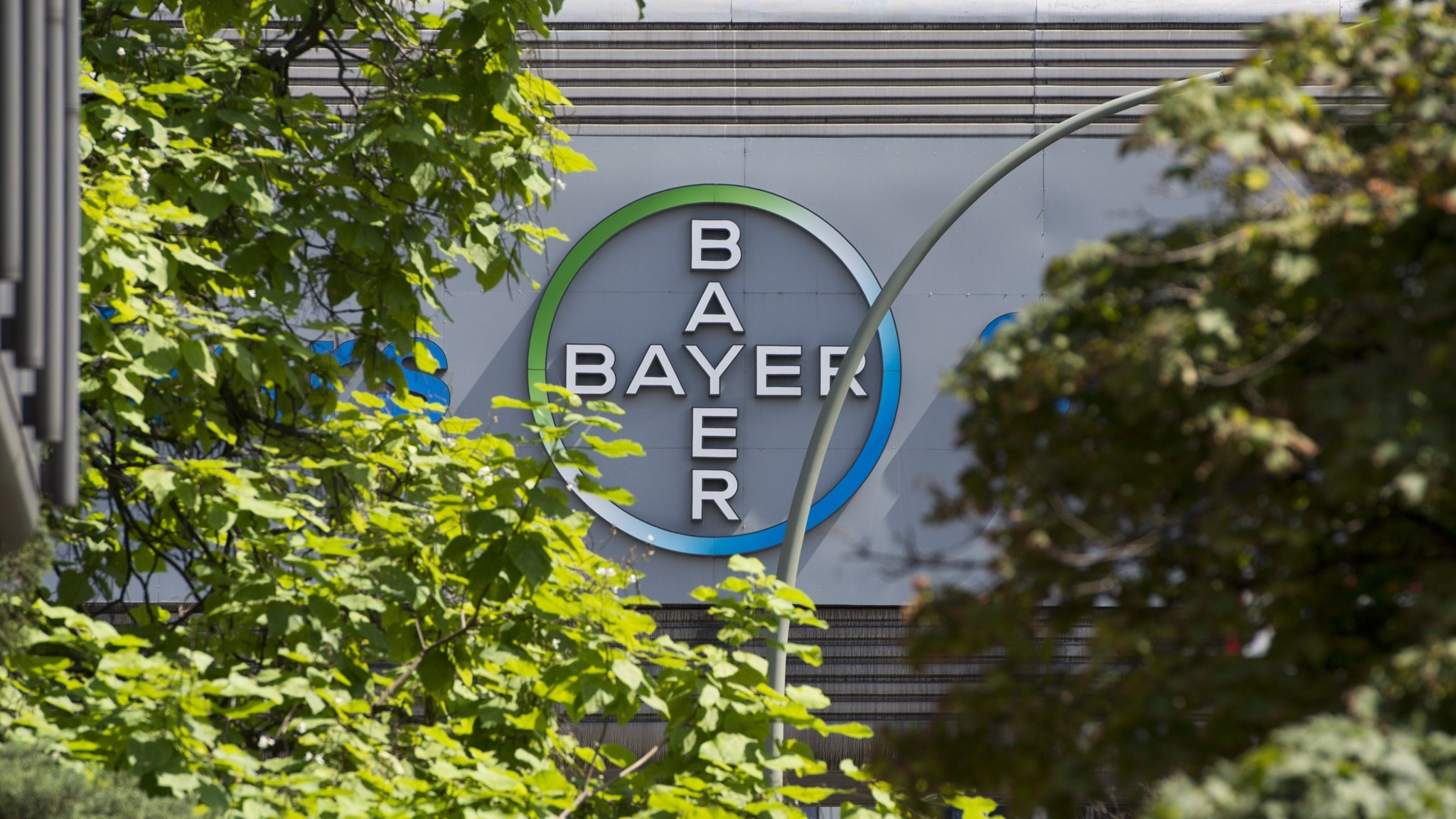 Bayer to list Covestro in fourth quarter   Financial Times