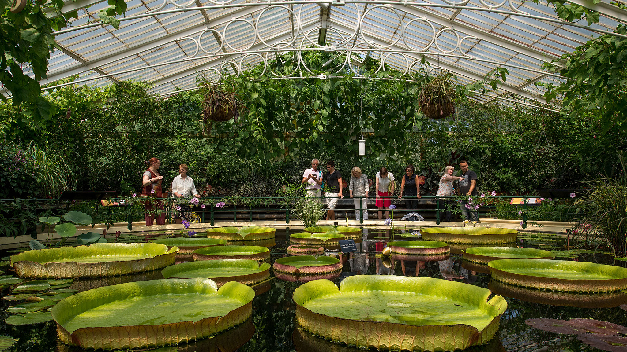 How To Fund The World Famous Royal Botanic Gardens At Kew   Financial Times