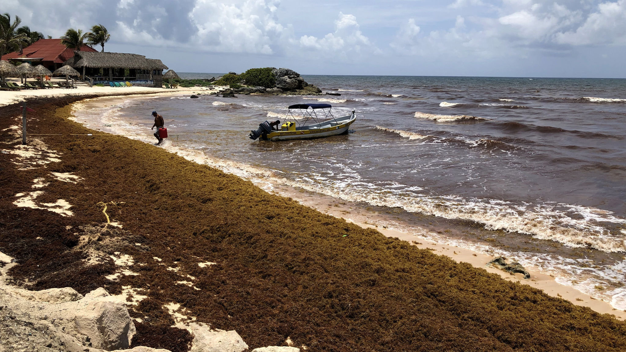 Mexican tourist industry counts cost as seaweed covers