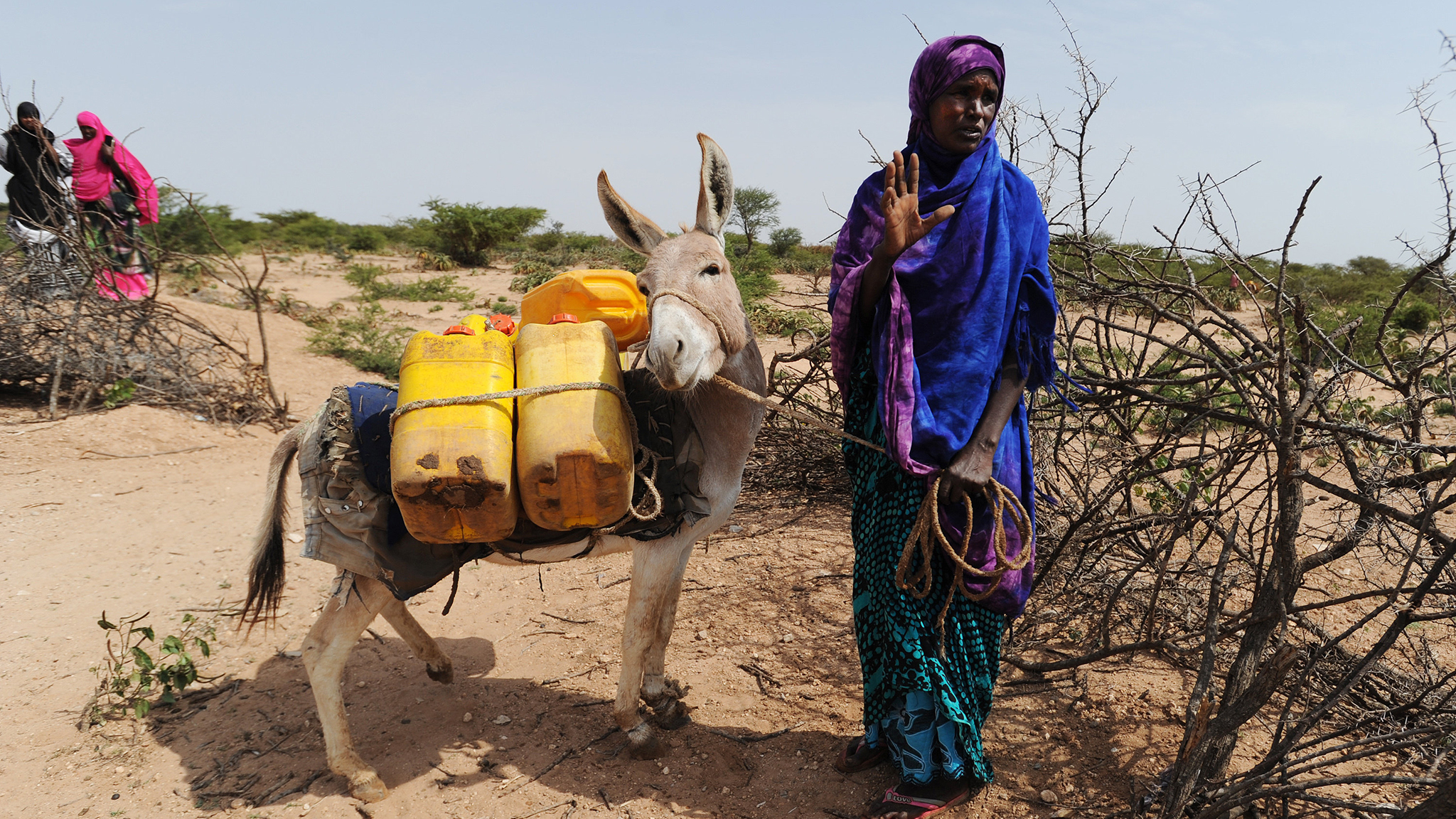 Climate Change In Somaliland You Can Touch It Financial Times
