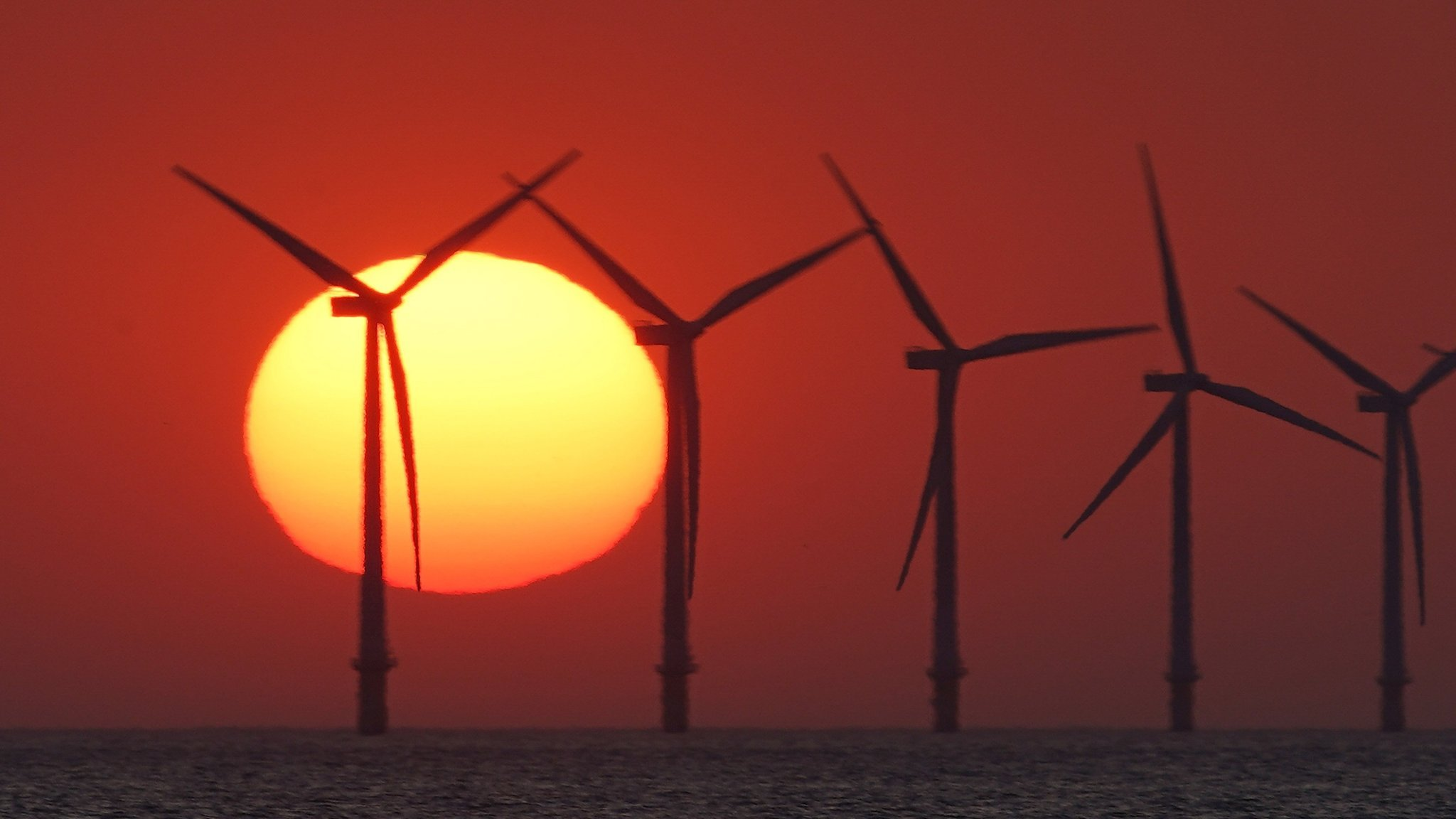 Renewable energy auctions: bidding our way to a greener future