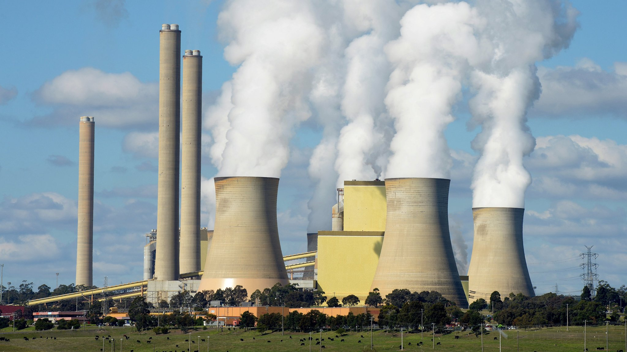 AGL Incurs Canberra's Wrath Over Plan To Shut Coal Power