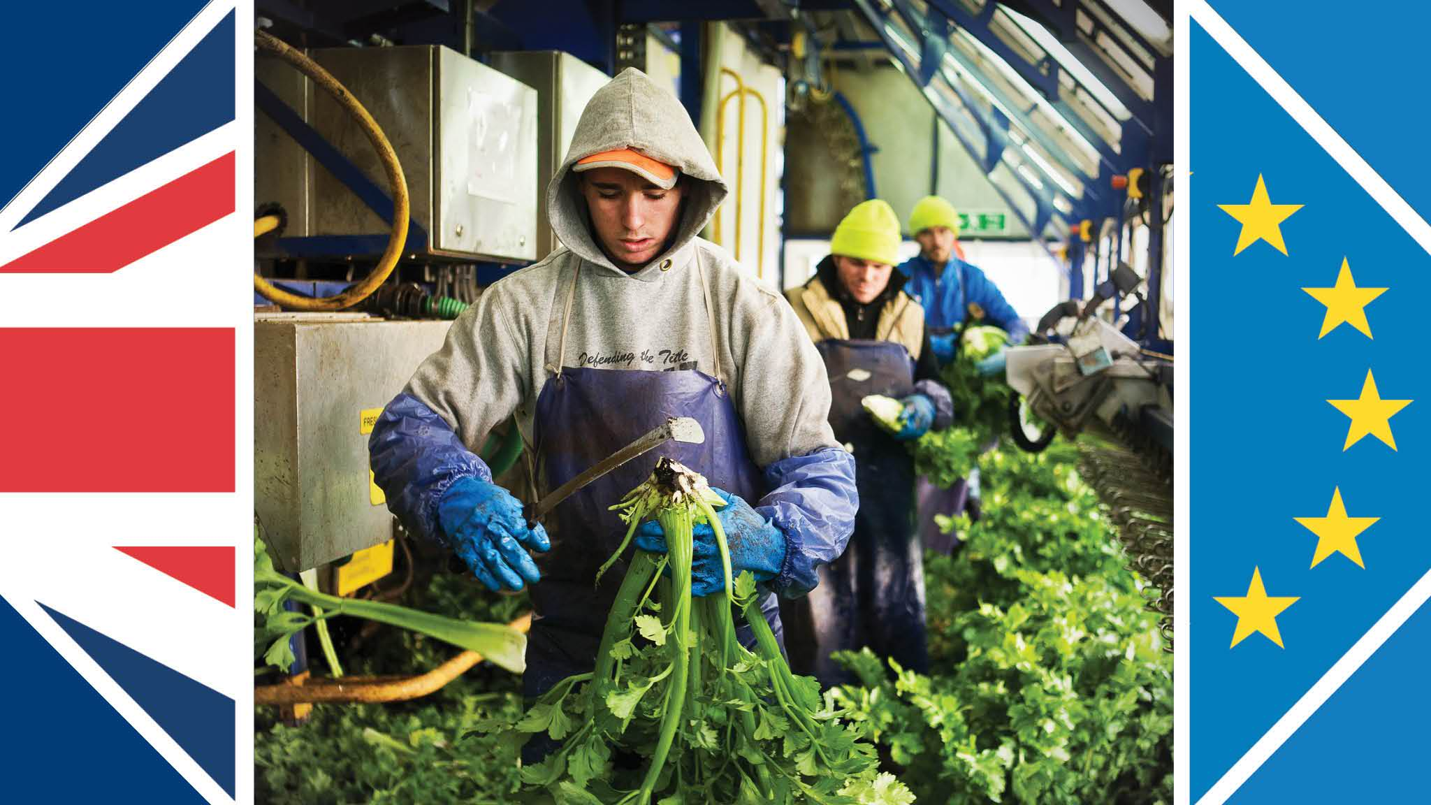 uk farms and factories will compete for migrants after brexit