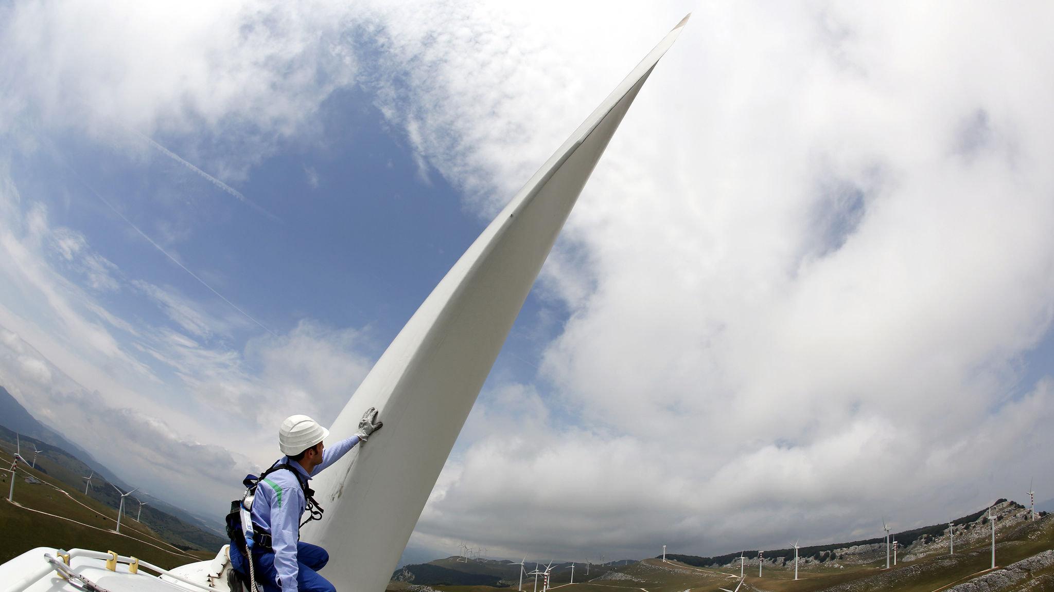 Balsa shortage threatens wind power rollout