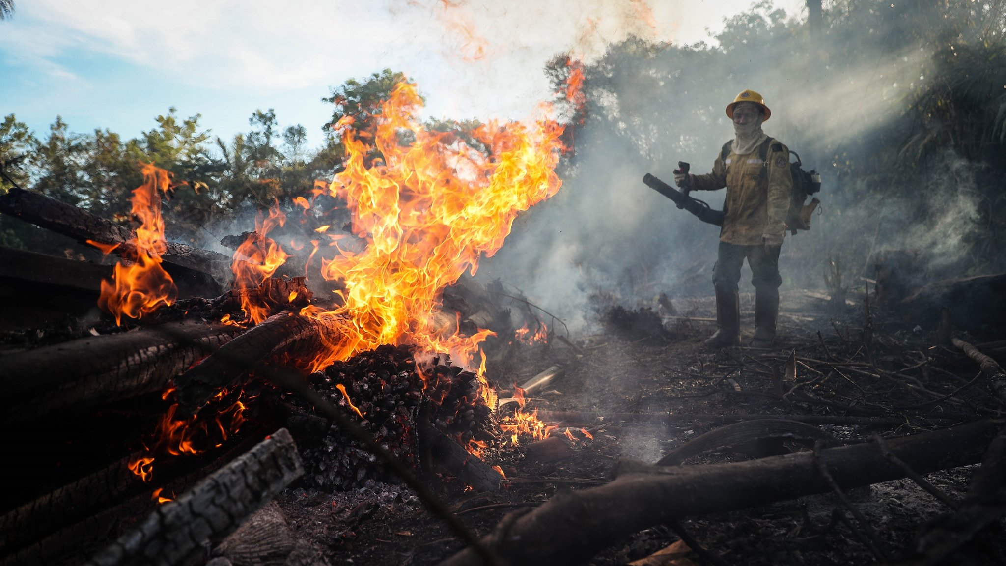 To stop the Amazon fires, rethink the development model