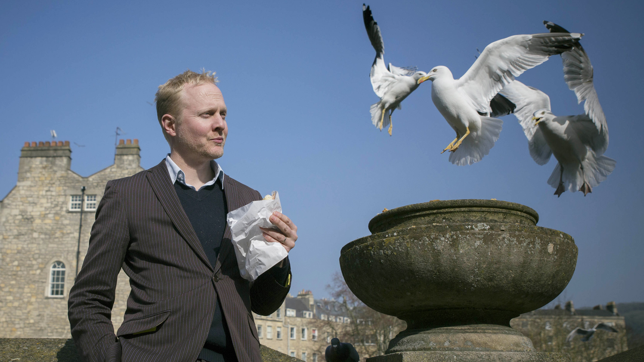 Election feathers fly over Bath's 'vermin on wings'   Financial Times