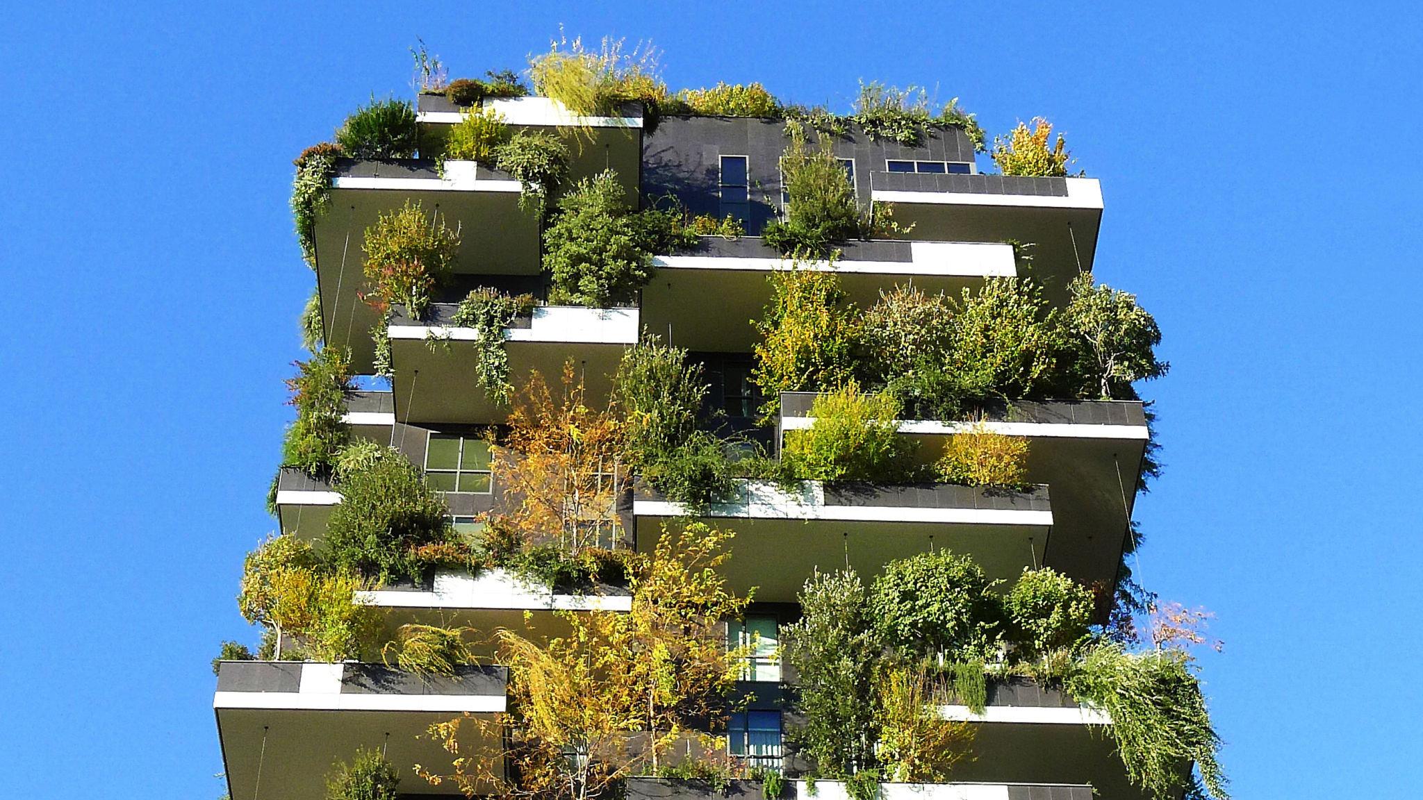 Vertical gardens breathe life into the city