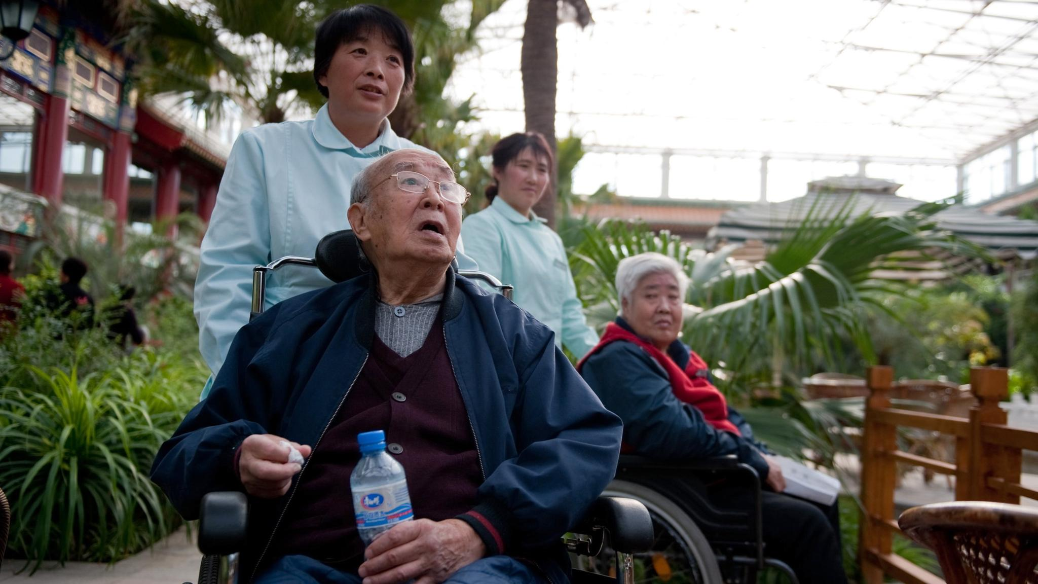 The Silver Economy: Japan sets template for private sector care