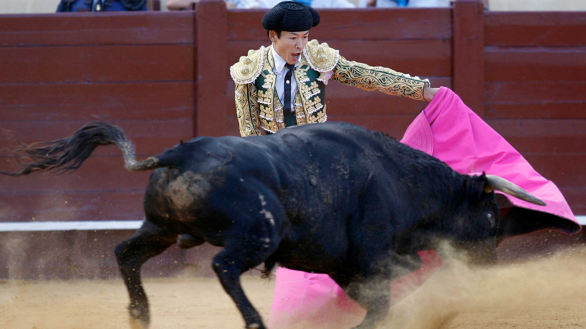 Bullfighting HD Wallpapers