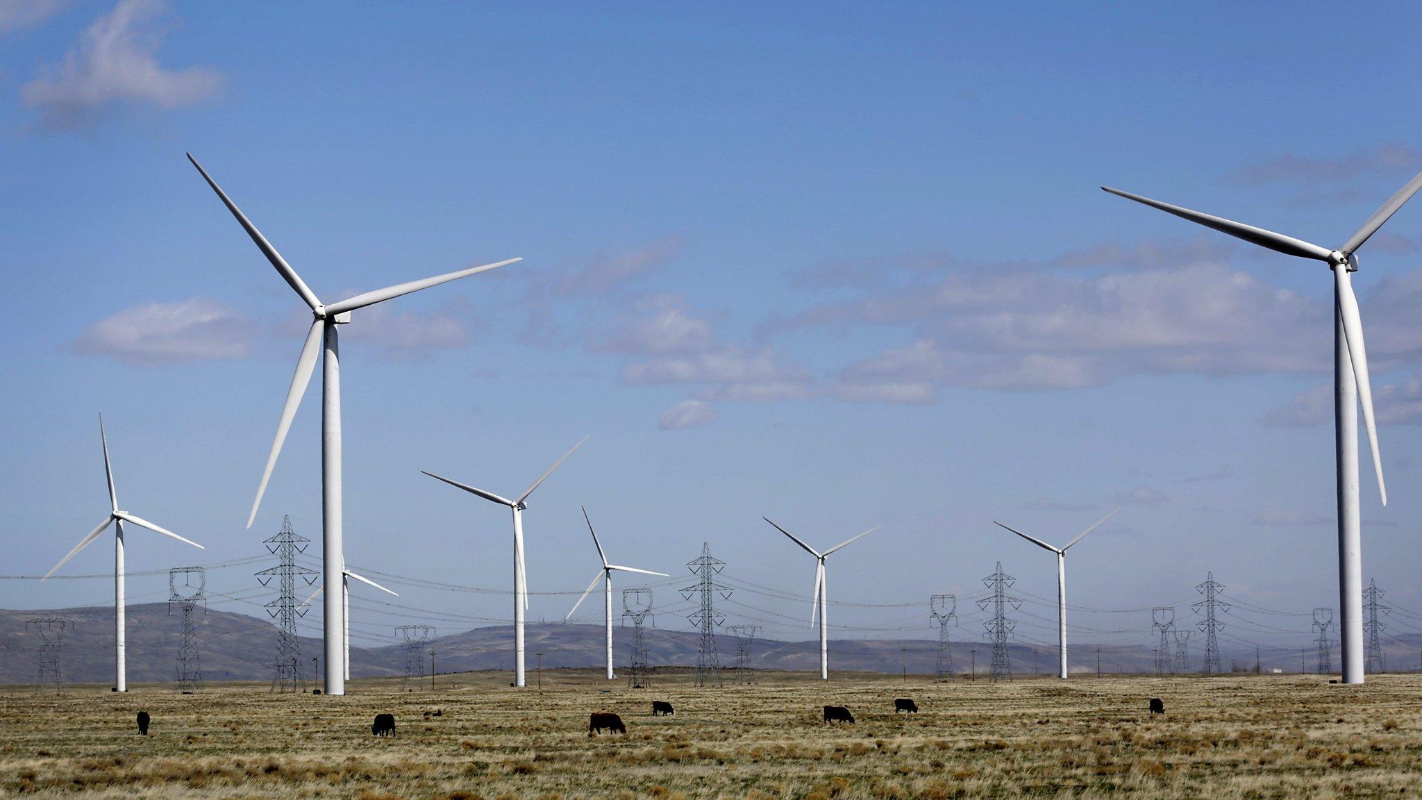 Big US panies spearhead renewable energy drive