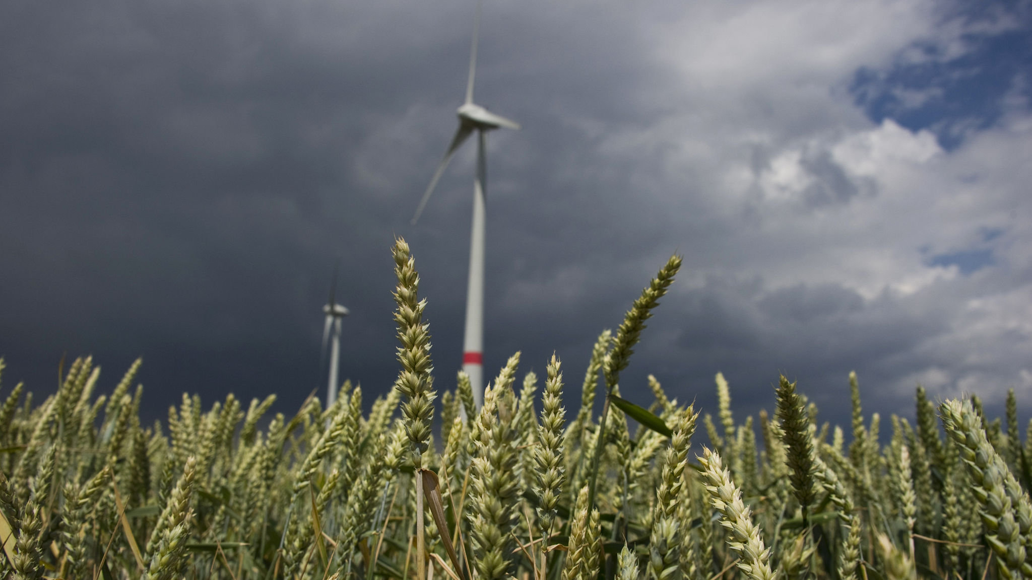 Decline in new German wind farms sparks concern | Financial