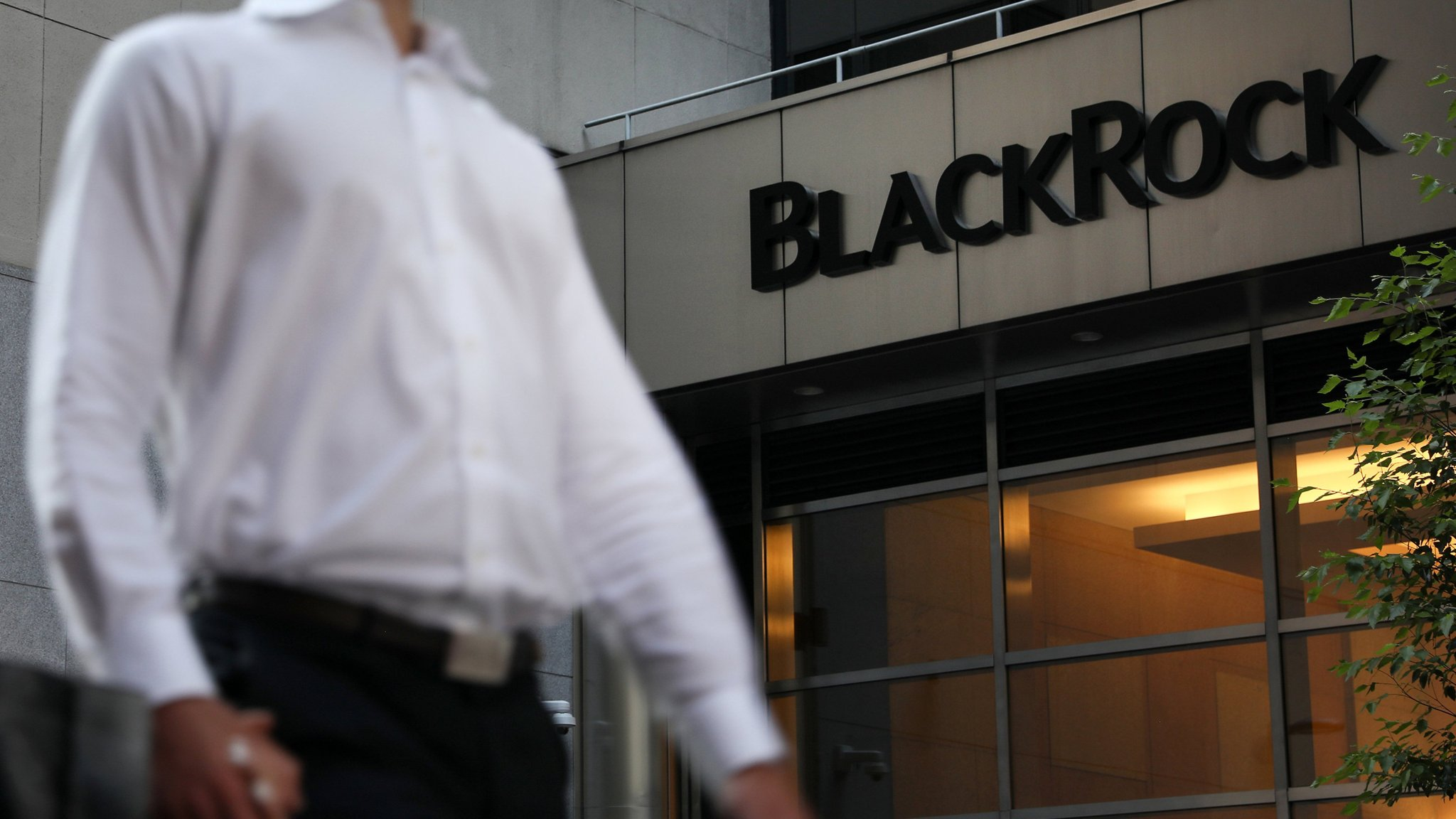 BlackRock has rattled the private equity industry