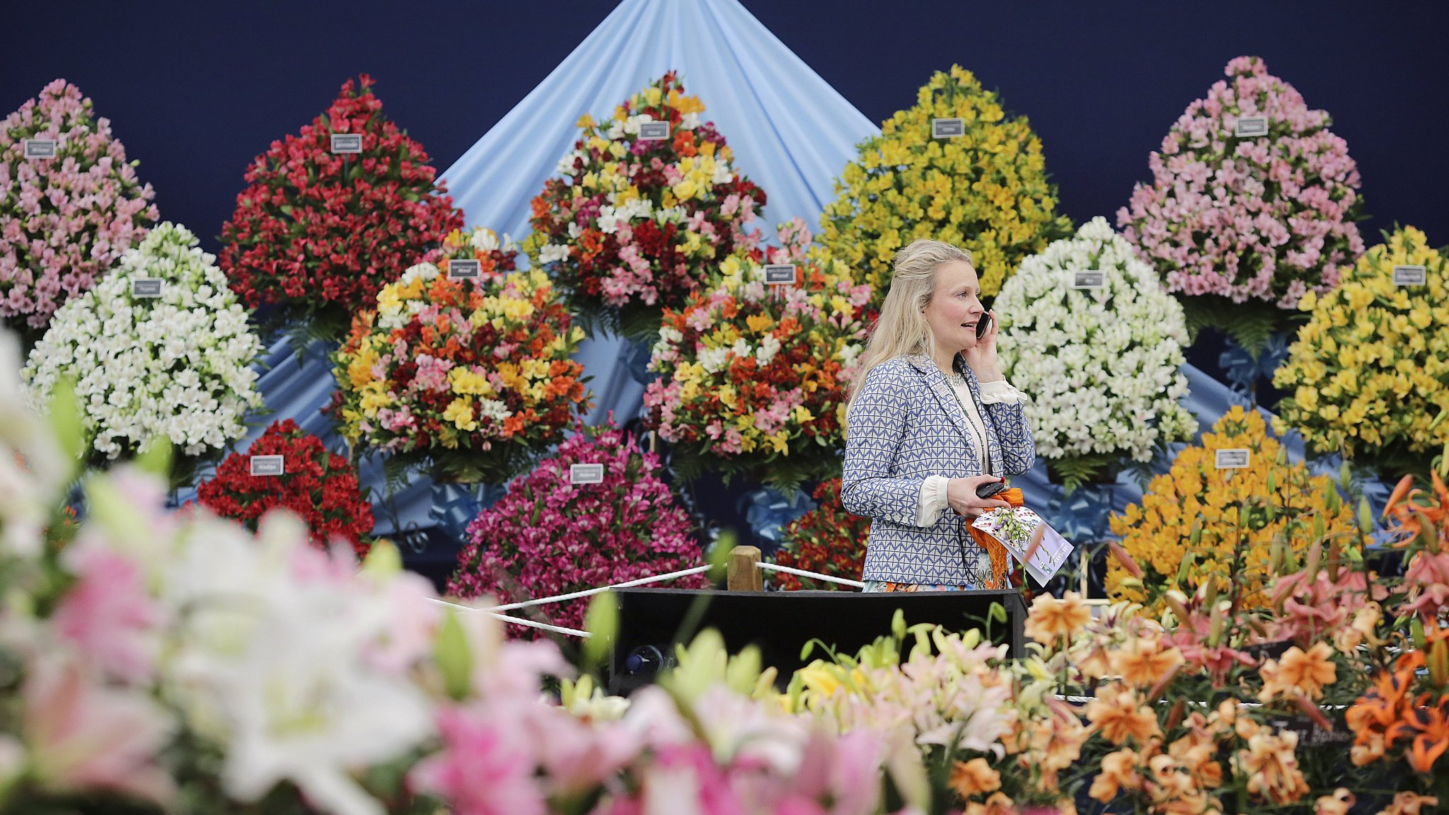 Sponsorship Wilts For The Chelsea Flower Show Financial Times