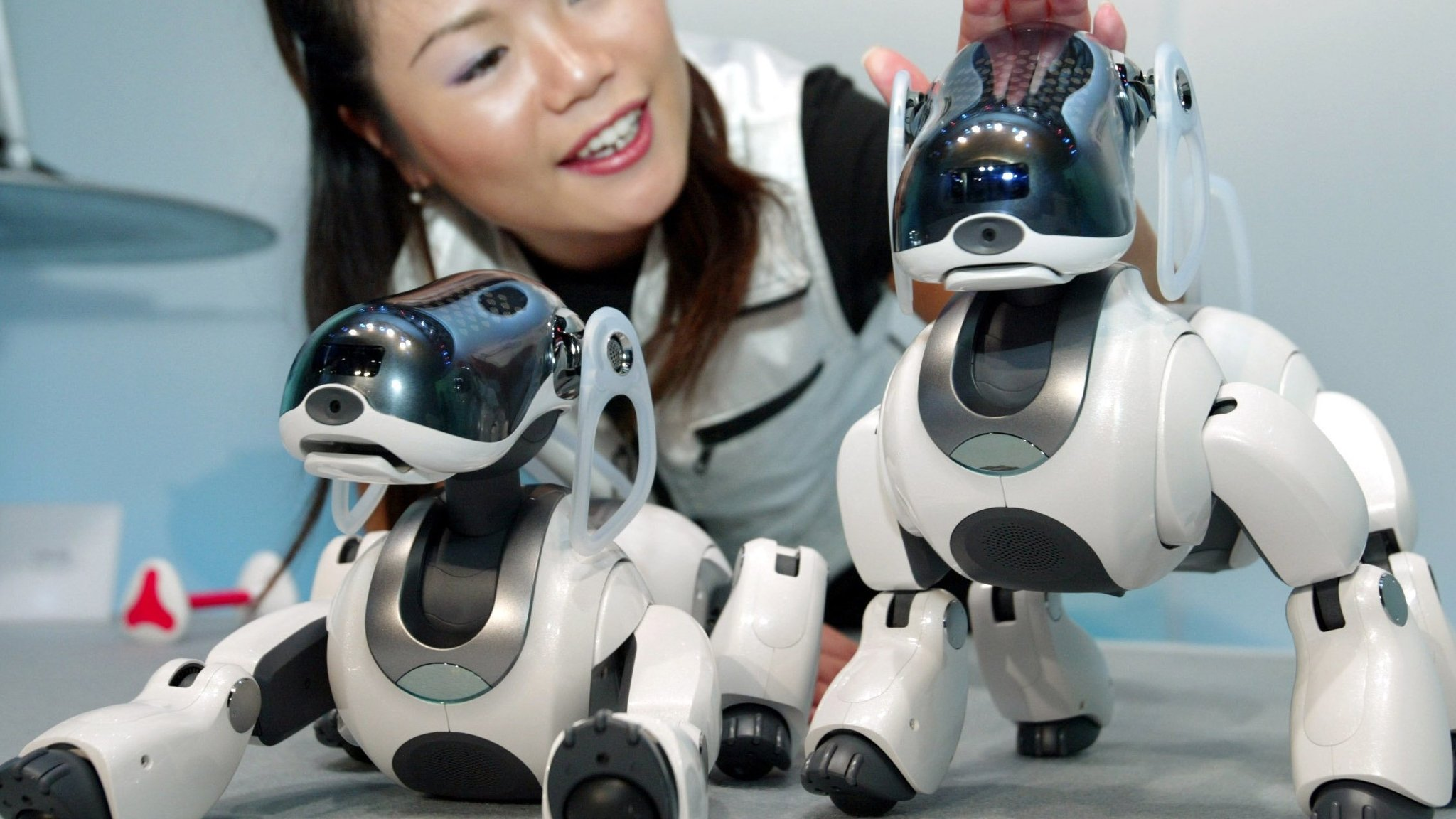 Japanese markets primed to run after the robot dog