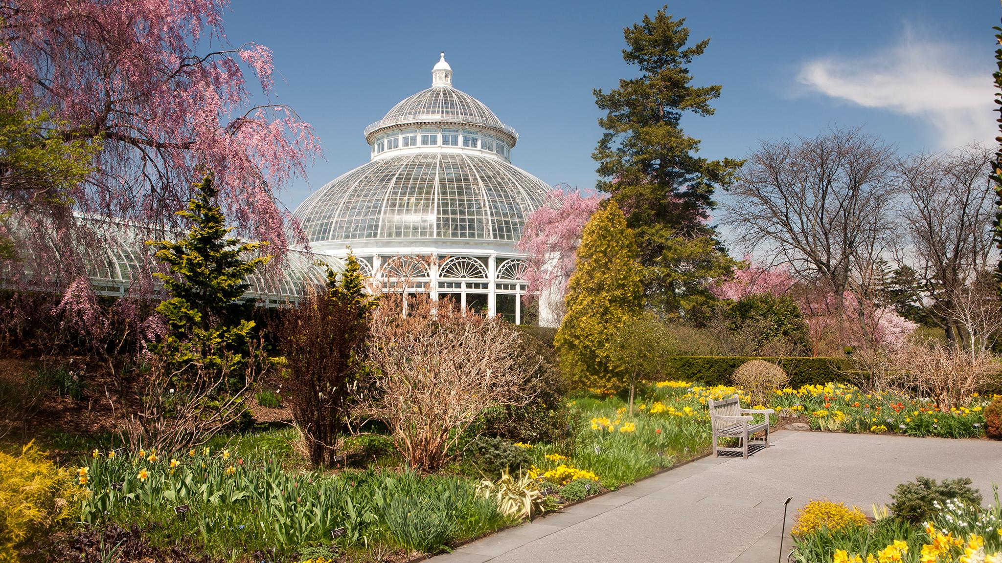 New York Botanical Garden Marks Its 125th Anniversary Financial