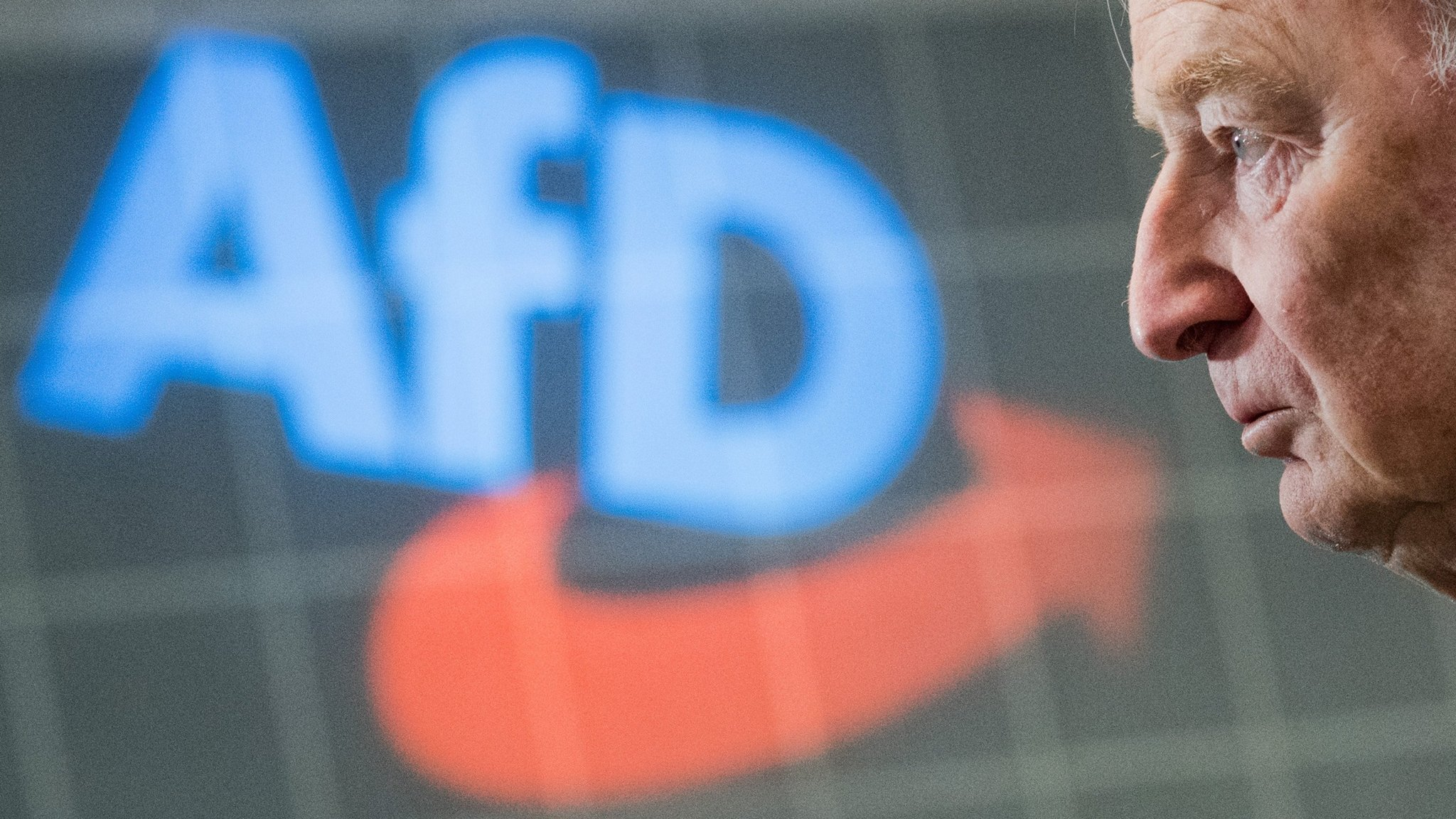 AfD moderates suffer defeat that reveals shift to party's hard-right