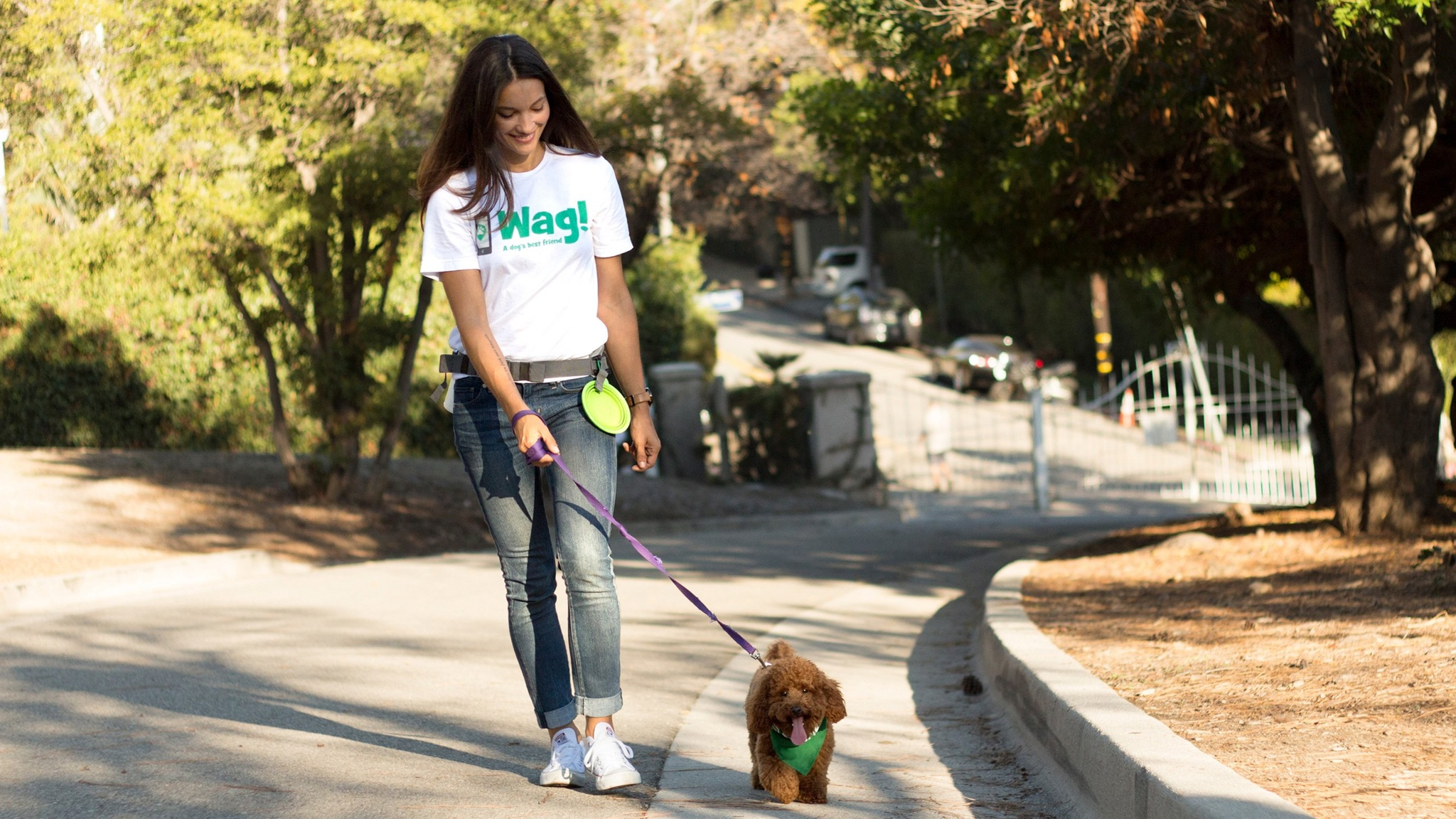 SoftBank ditches stake in dog walking start-up Wag
