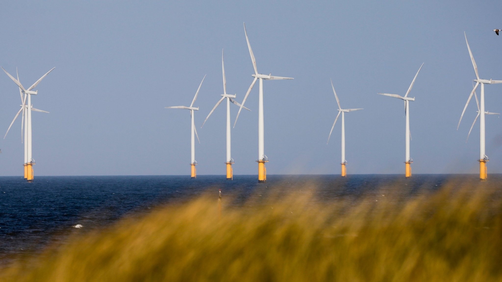 Ministers warned on subsidy risk to offshore wind power projects