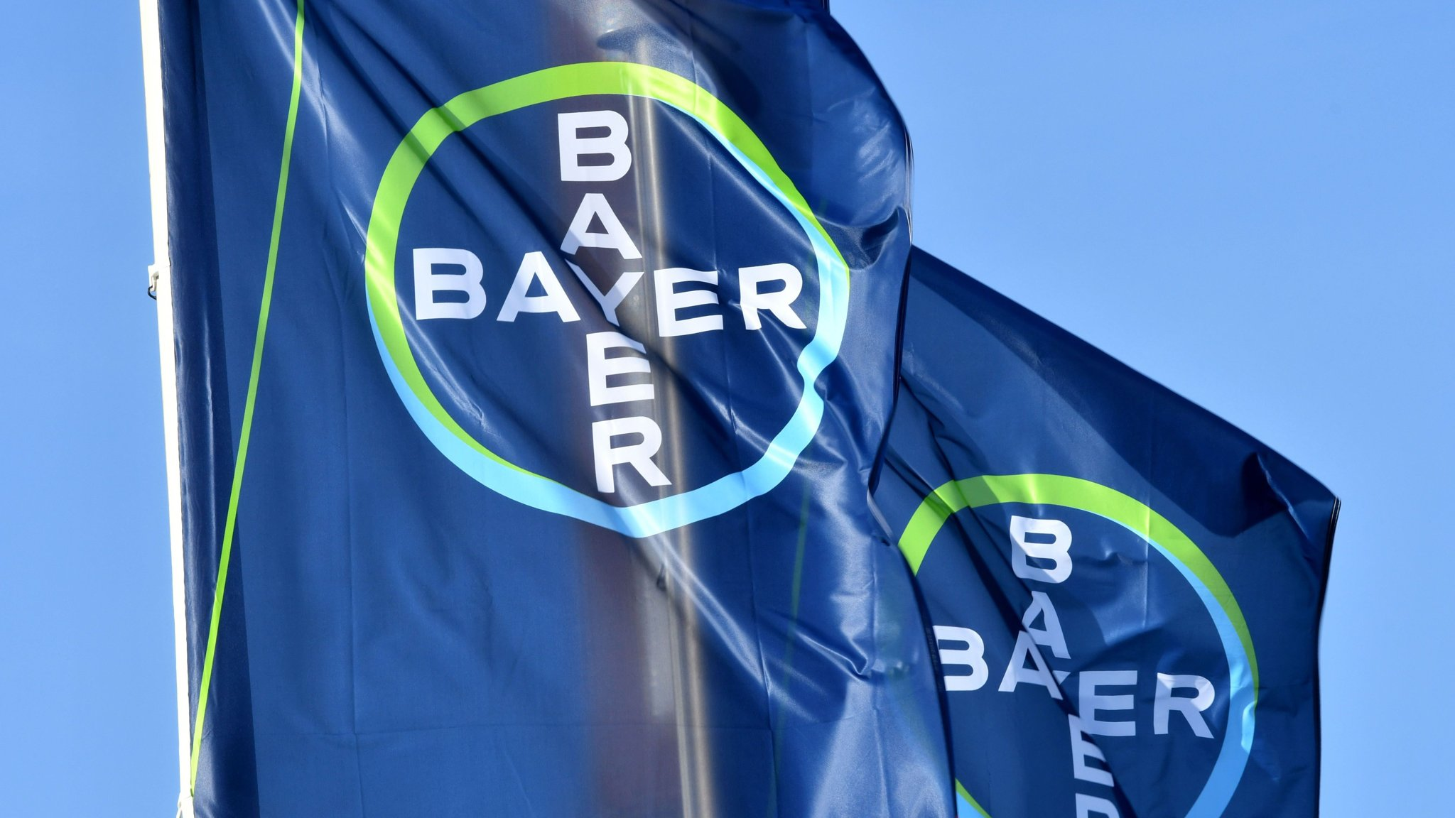 Bayer warns of lower earnings on Monsanto deal delays