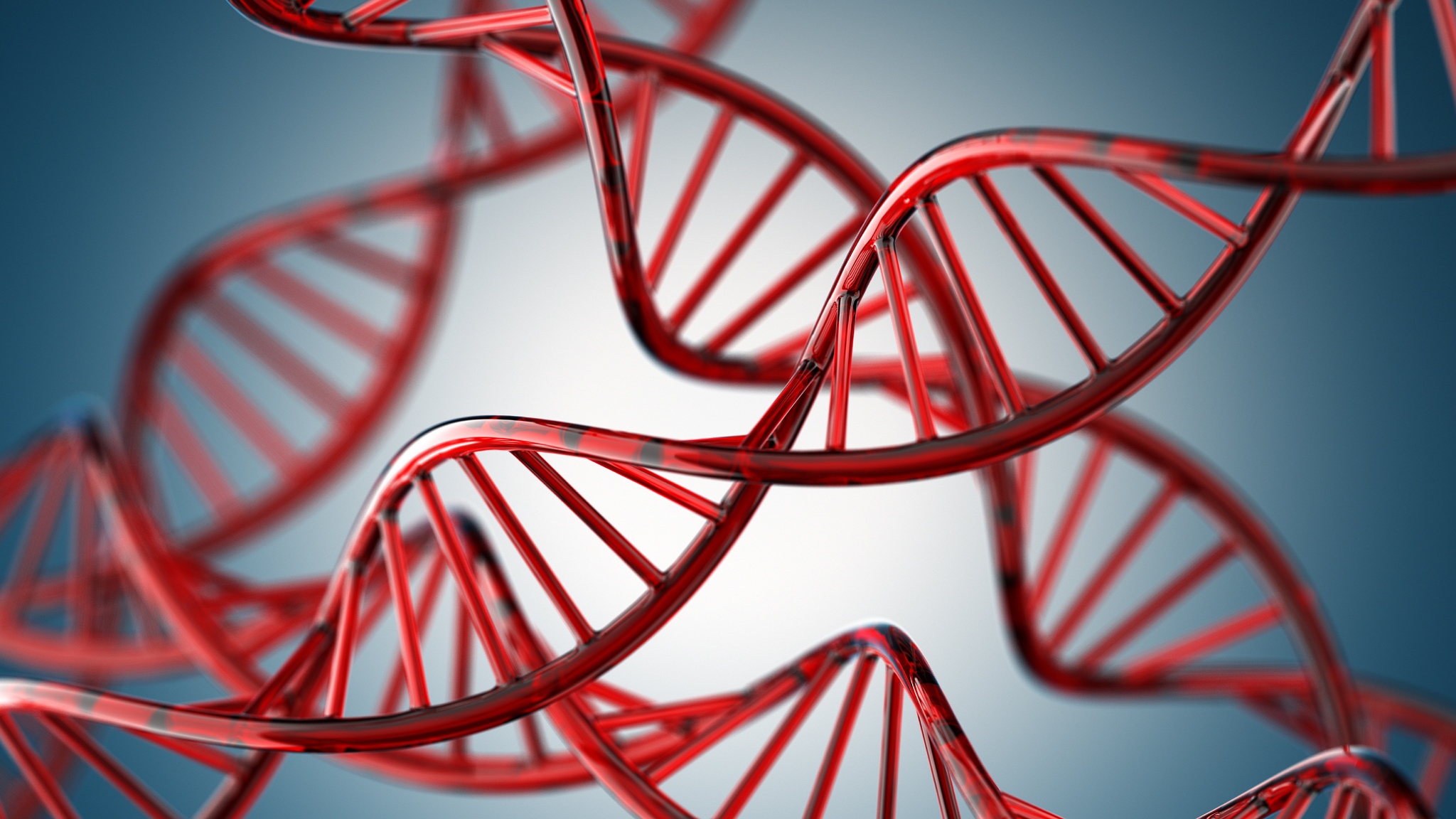 Buy essay online cheap the case for and against genetic engineering