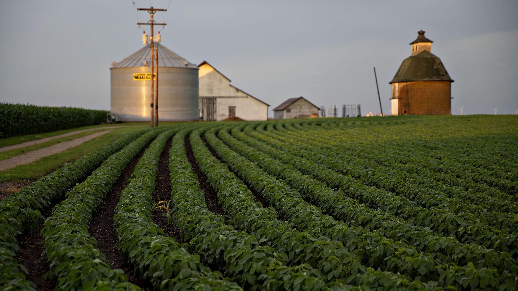 farm aid 2020 location