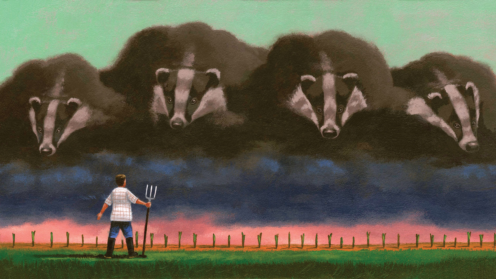 The night the badgers came for my tulips — and how to stop them