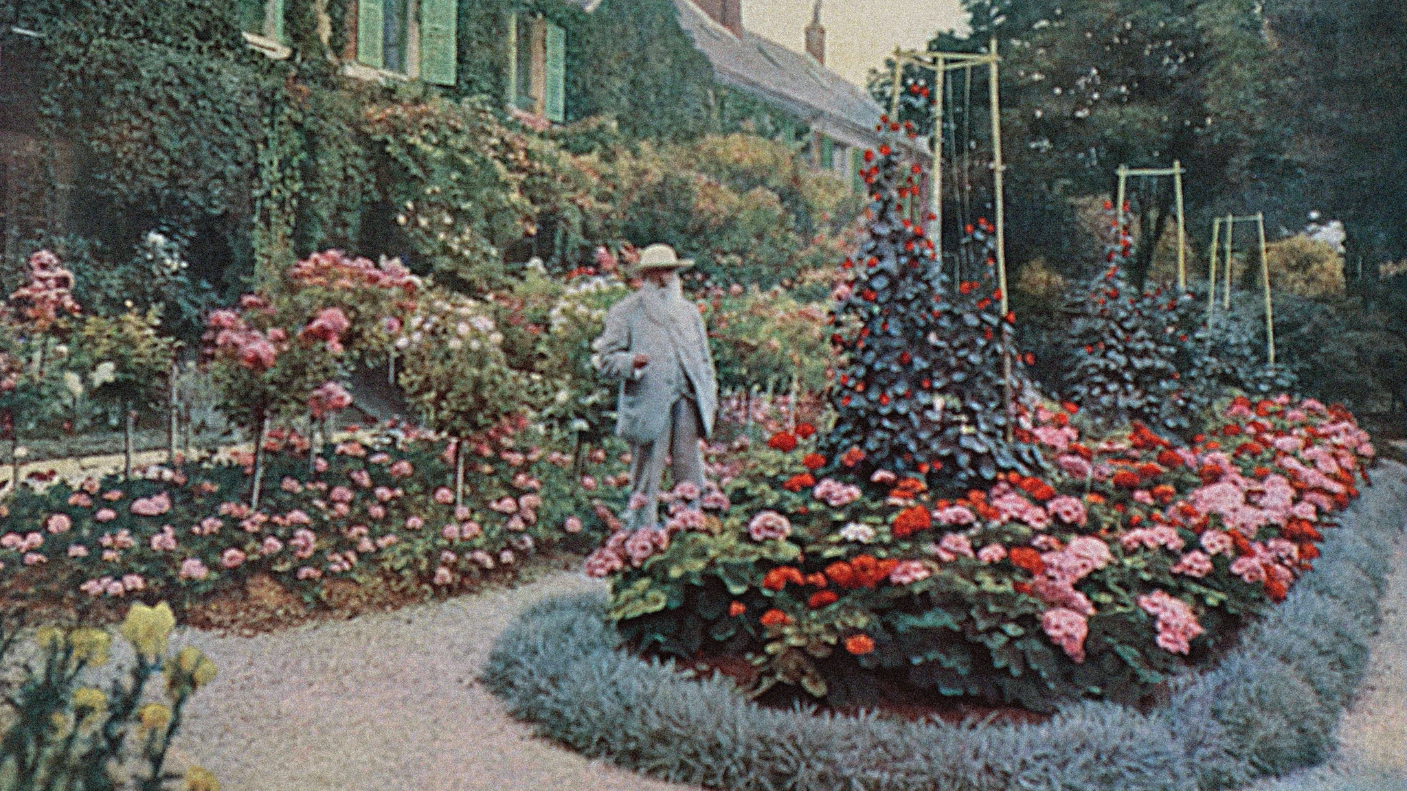 how to plant a garden with a riot of colours | financial times