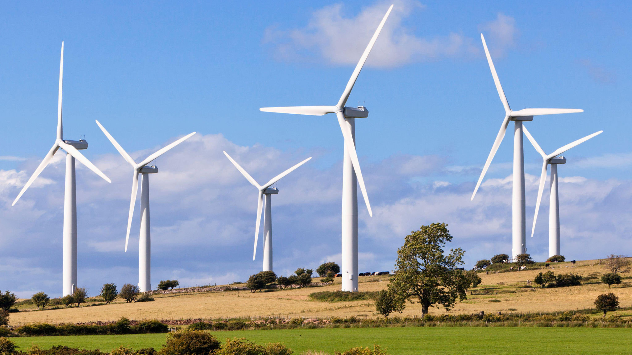 Johnson revives onshore wind farms after 4-year ban | Financial Times