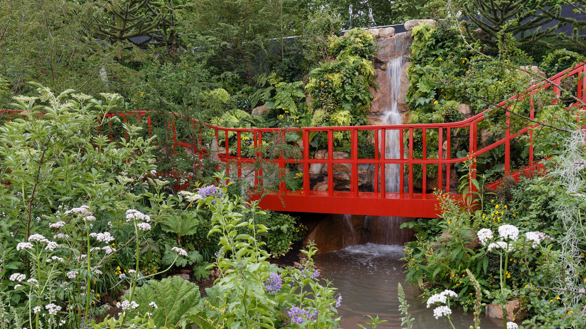 chelsea flower show: 'so much to enjoy'   financial times